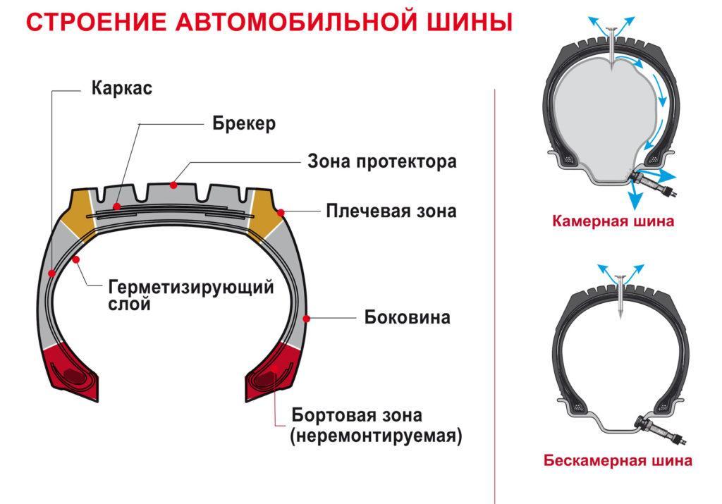 Строение шины